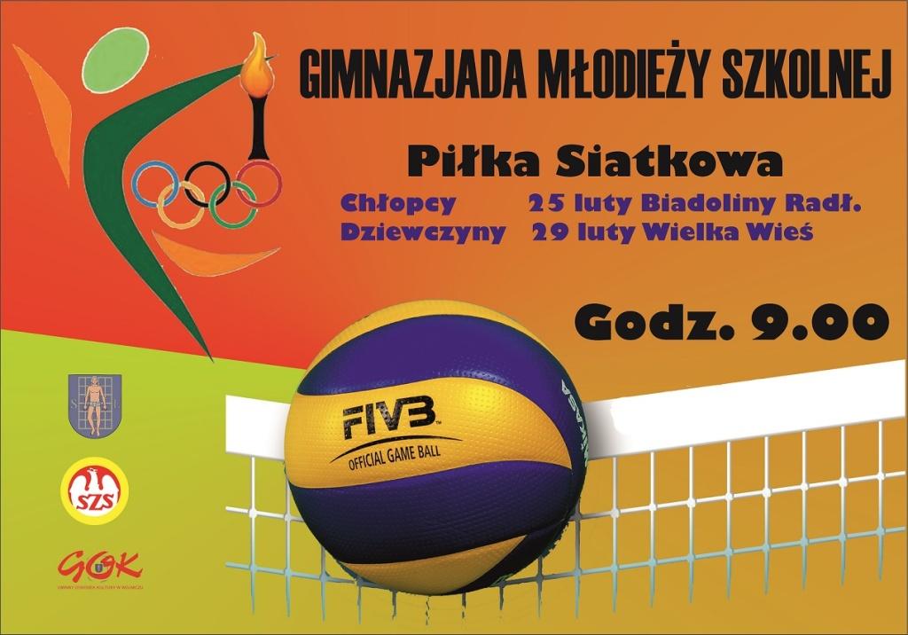 GMS Piłka Siatkowa