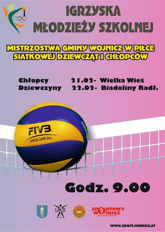 IMS Siatkówka 2016-17 (2)